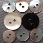 penguin shell buttons wholesale