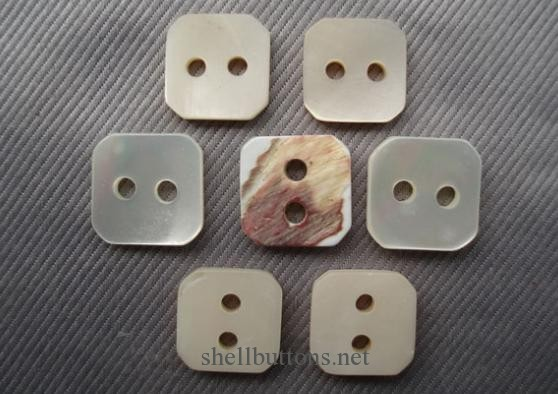 square trocas shell buttons wholesale