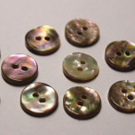 paua shell buttons new zealand wholesale