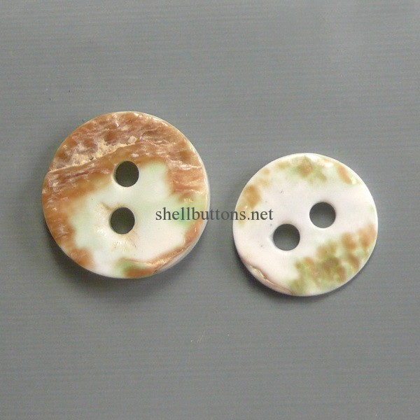 plat trocas shell buttons wholesale