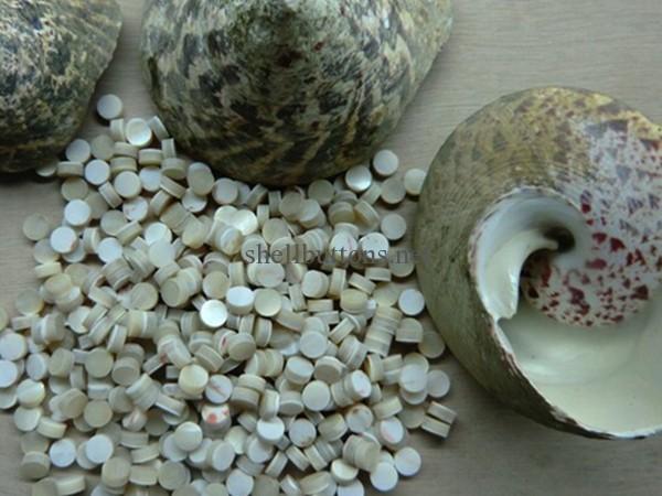 Trocas Shell buttons Trochus Shell Buttons