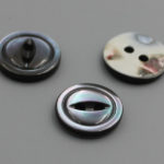 2 hole trocus shell buttons wholesale