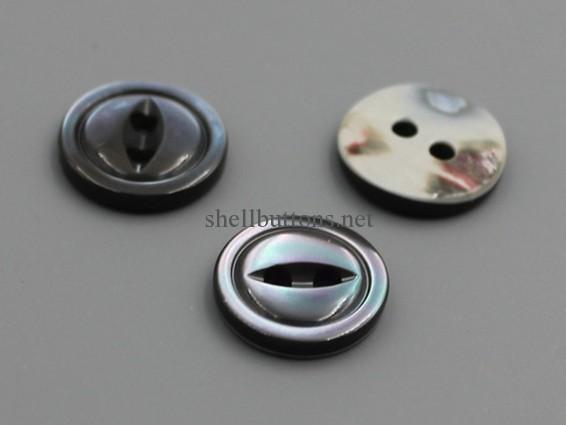 2 hole trocus shell buttons wholesale
